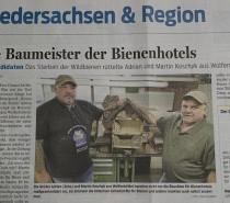 Die Baumeister der Bienenhotels